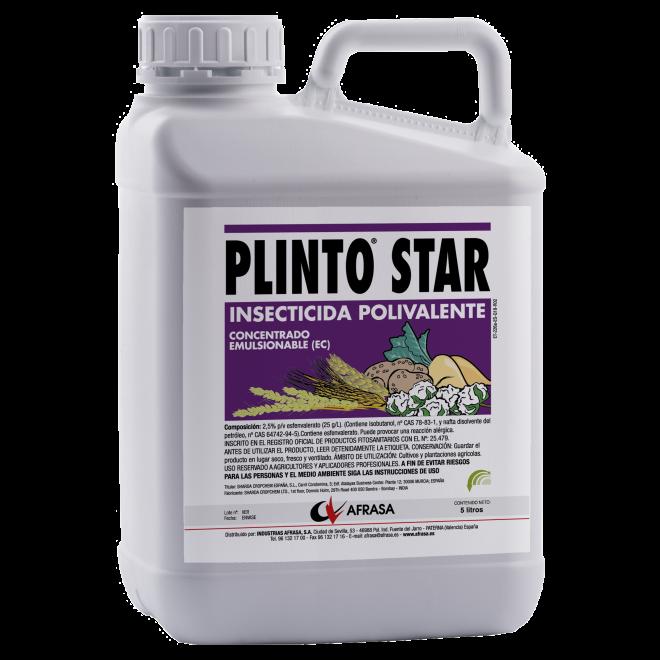PLINTO STAR