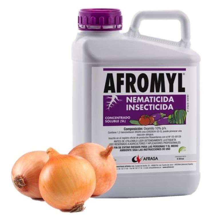 Afromyl cebolla