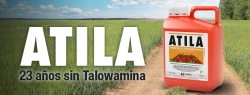 ATILA: 23 años sin Talowamina