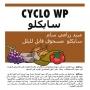 CYCLO WP